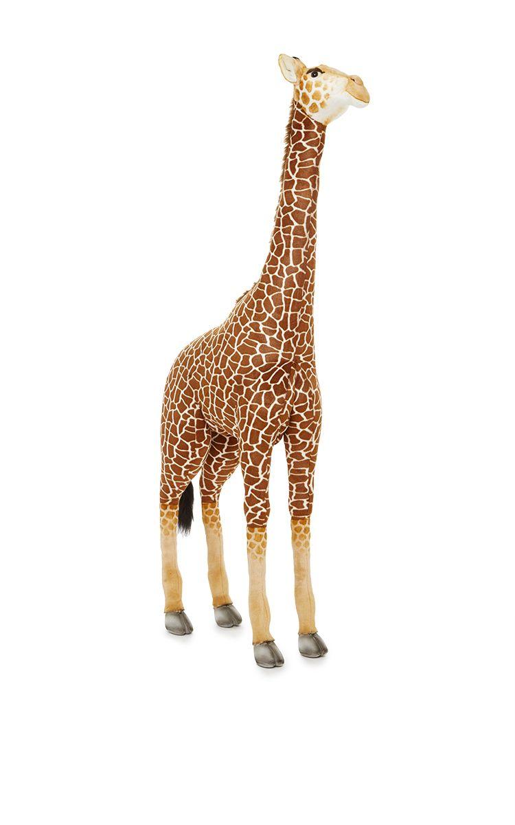 Click To Full Screen Large Giraffe Giraffe Plush Giraffe [ 1200 x 750 Pixel ]