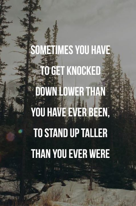 I Get Knocked Down But I Get Up Again Well Said Quotes Life