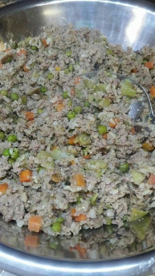 My dog food recipe ground turkey 3 lbs brown rice 15 c small bags my dog food recipe ground turkey 3 lbs brown rice 15 c small bags frozen carrots peas and broccoli 2 eggs bake freeze forumfinder Choice Image