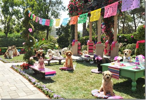 BHC3 02382 thumb GIVEAWAY: Beverly Hills Chihuahua 3 Viva La Fiesta!  Langham Hotel
