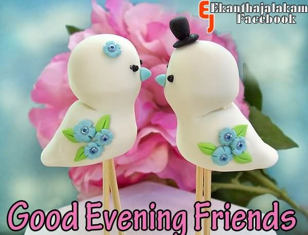 Good Evening Friends Wishes Love Bird Couple Picture For Facebook
