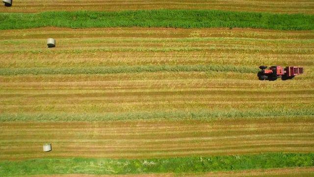 """Vidéo réalisé par Drone Diffusion à la ferme """"Plumes d'or""""."""