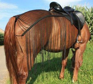 Pferdeschlauch