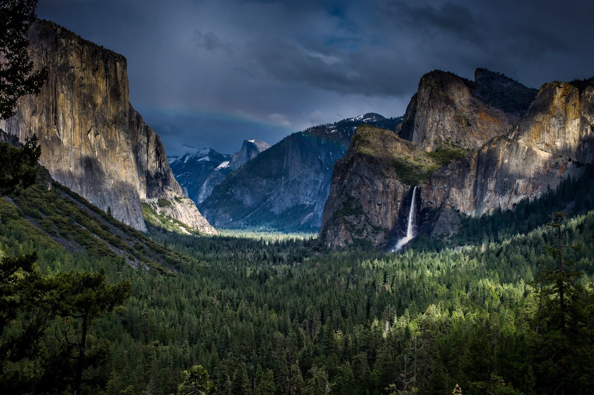 Yosemite Valley. Photo by Ece Batchelder.