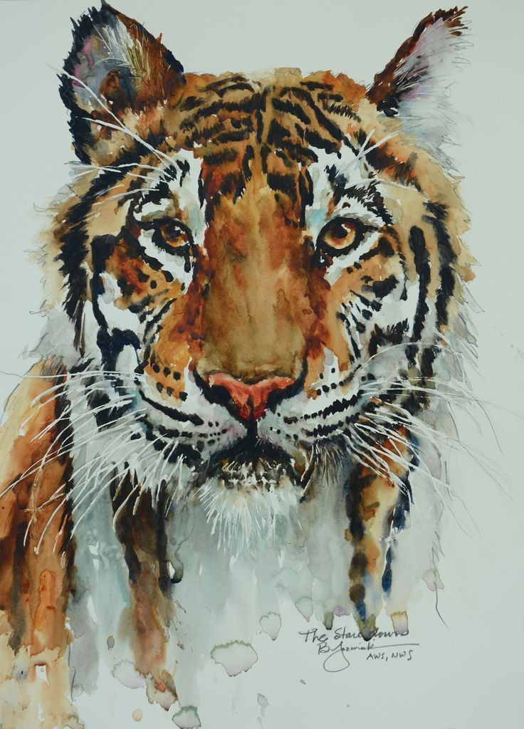 Картинки по запросу watercolor animals | painting | Pinterest ...