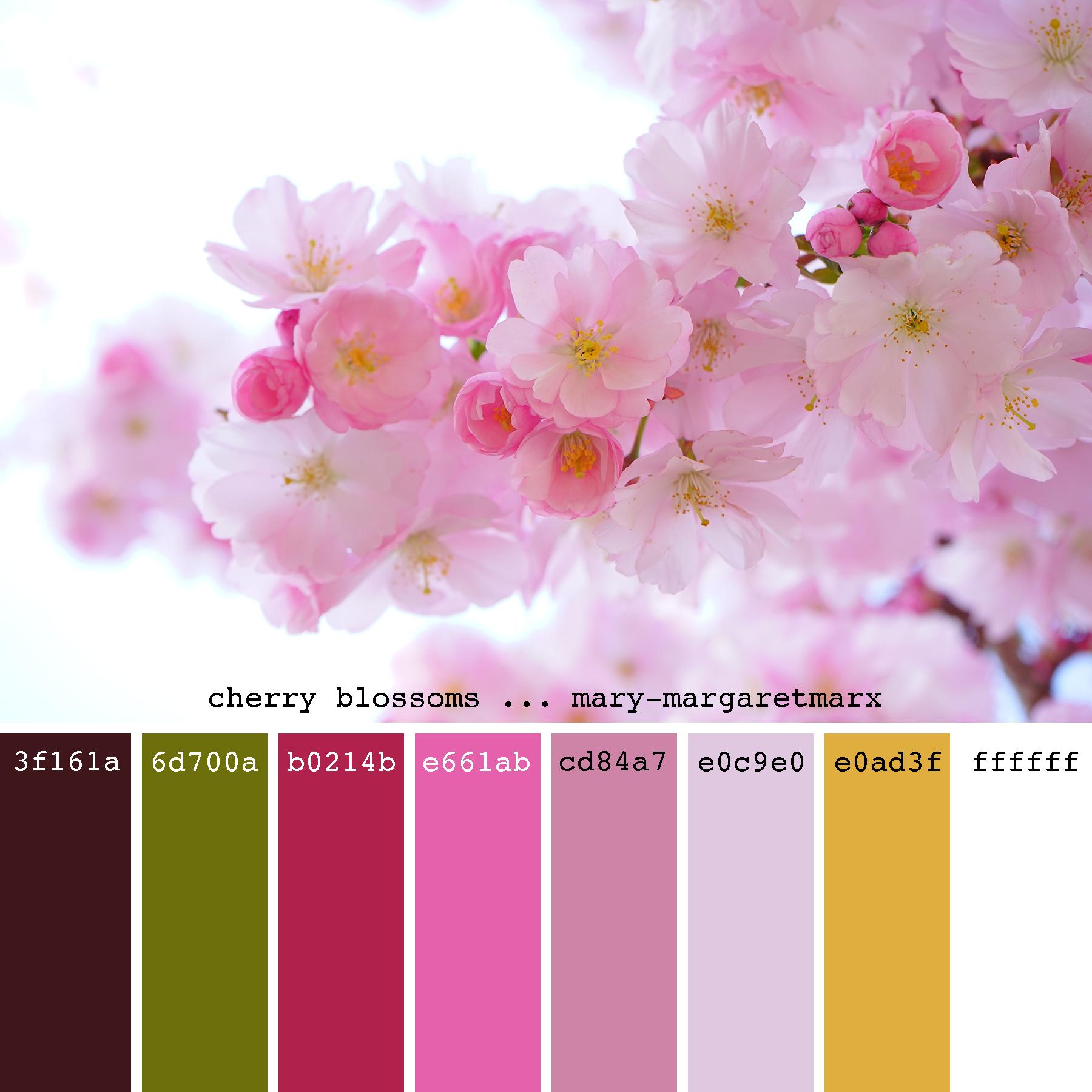 Обои Весна, цветение, влюбленные, цветы. Настроения