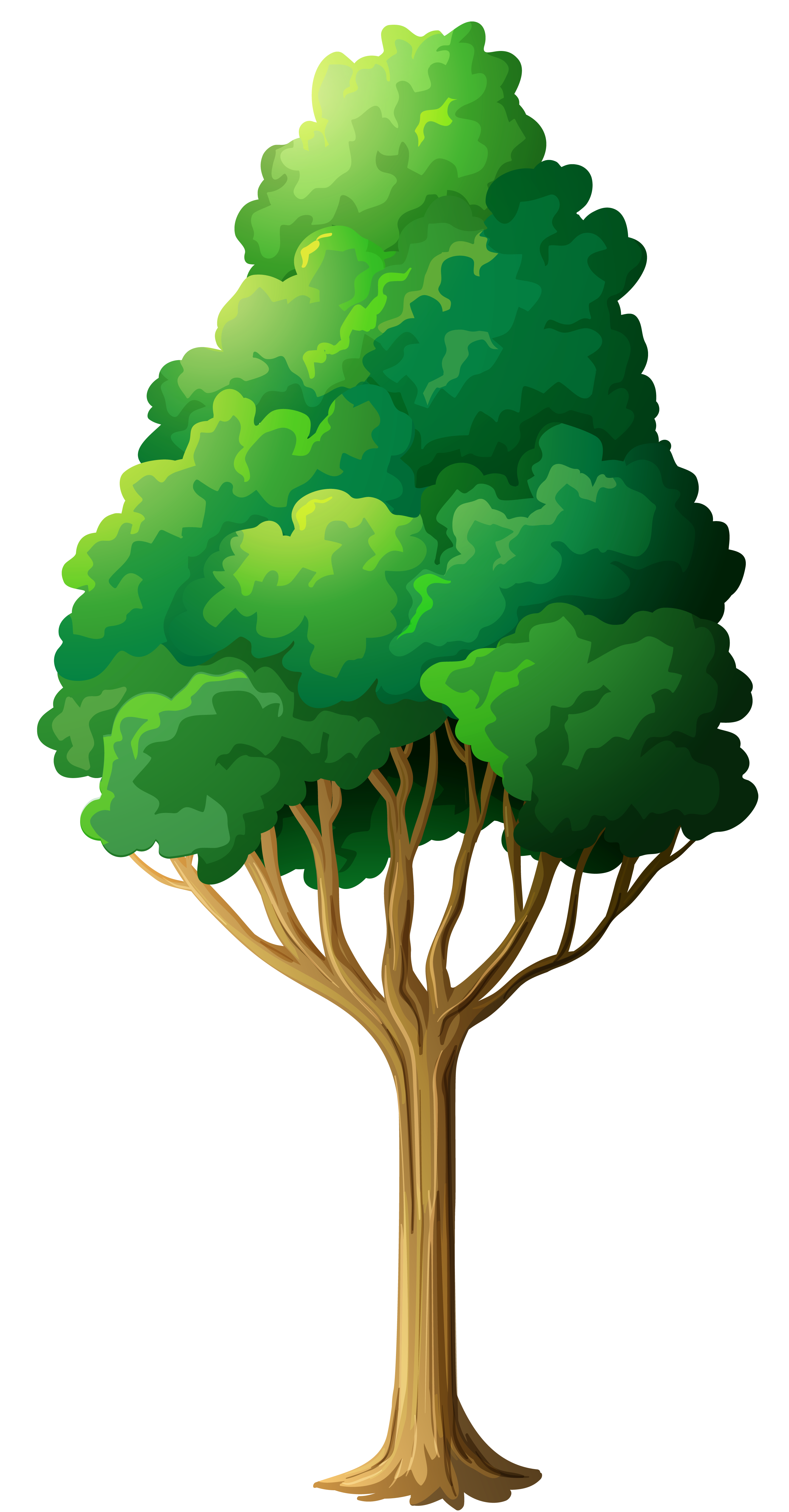 Green Tree Png Clipart Gallery Yopriceville High Quality Images And Transparent Png Free Clipart Tree Art Clip Art Tree Clipart