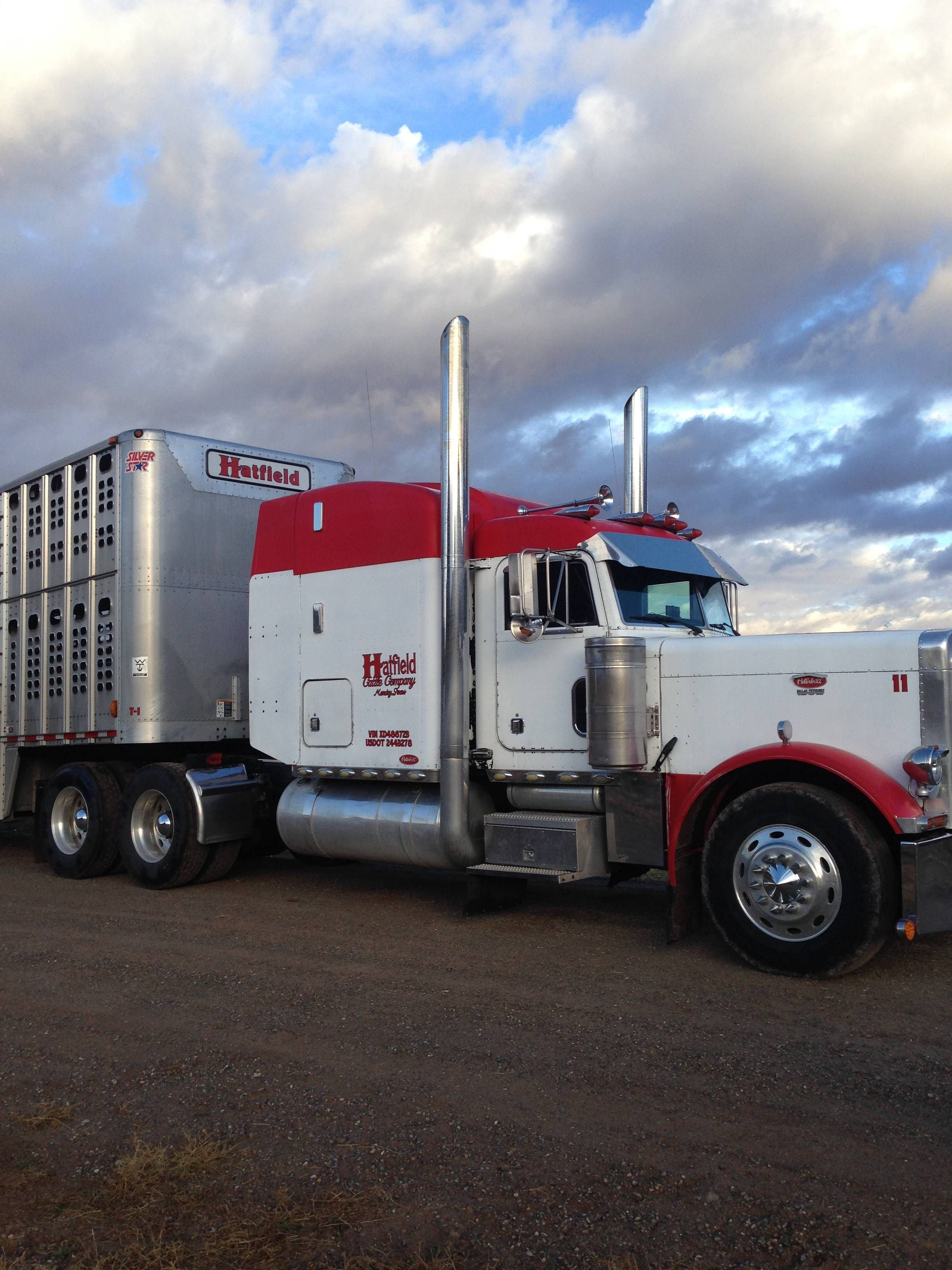 1999 peterbilt 379 for sale for more information click on the image or see ad