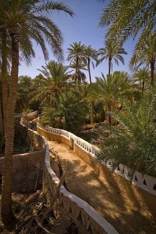 Old Ghadames Street Libya Libya Places To Visit Scenery