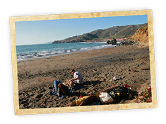 Get outdoors with Weekend Sherpa. Find weekend activities from hikes, bikes, camping, water activities, and overnight escapes in California. - Weekend Sherpa