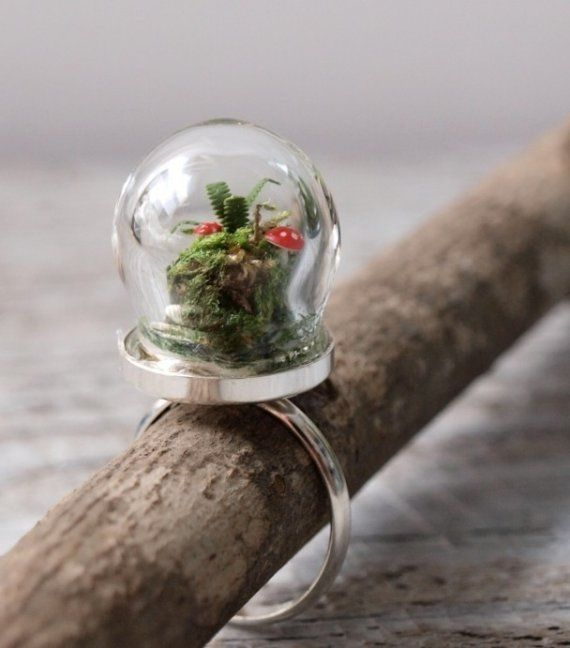 terrarium ring globe pinterest bijou plante jardin et sous verre. Black Bedroom Furniture Sets. Home Design Ideas
