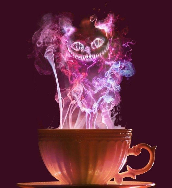 Cheshire Cat Fog Photographic Print