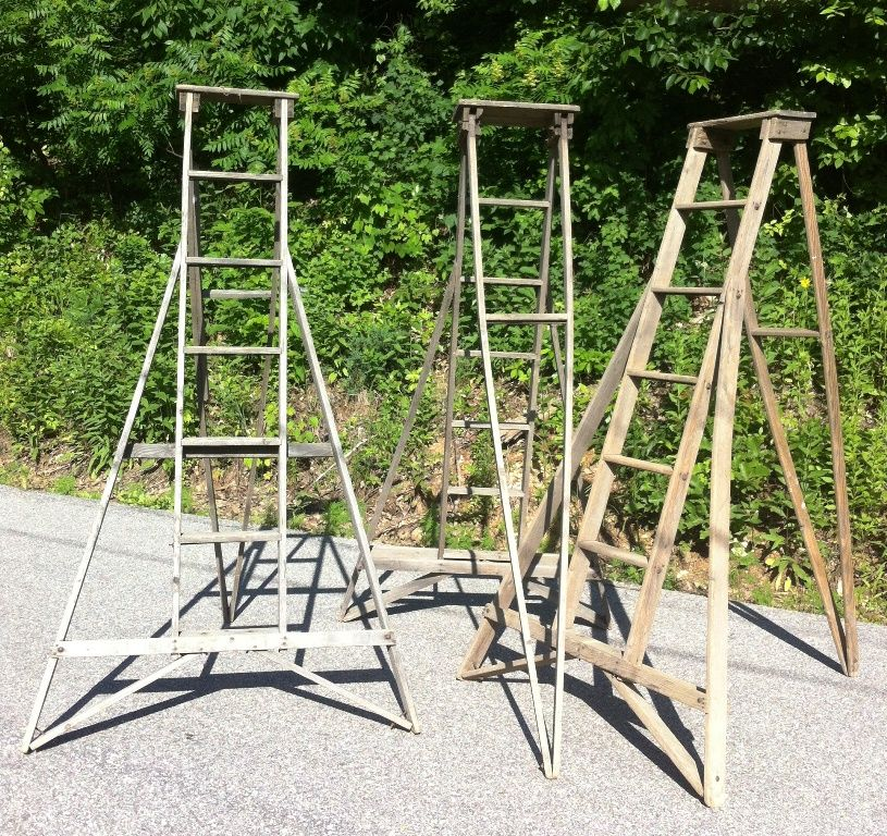 Vintage Apple Orchard Ladders Will Need This To Pick Apples From Our Trees Ladder Vintage Apple Vintage Wooden Crates