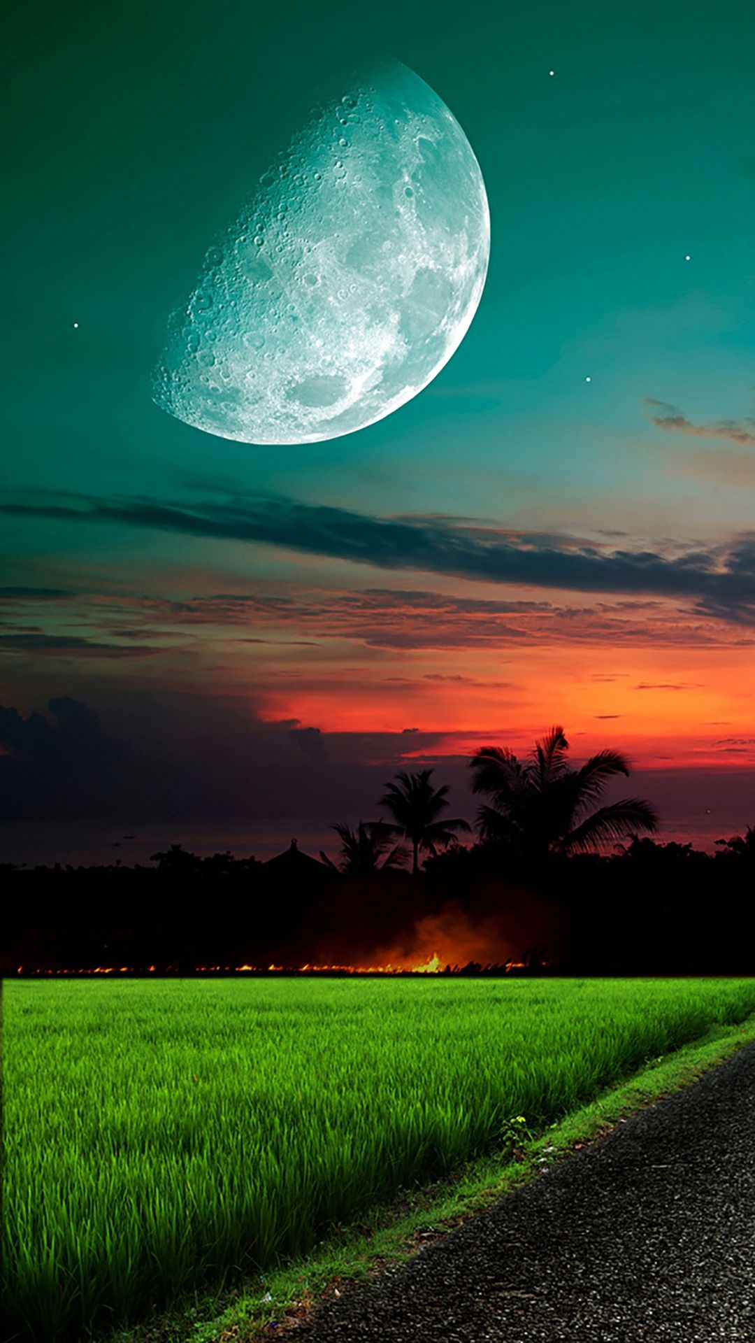 Moon And Sky Grass iPhone 6 wallpaper Beautiful