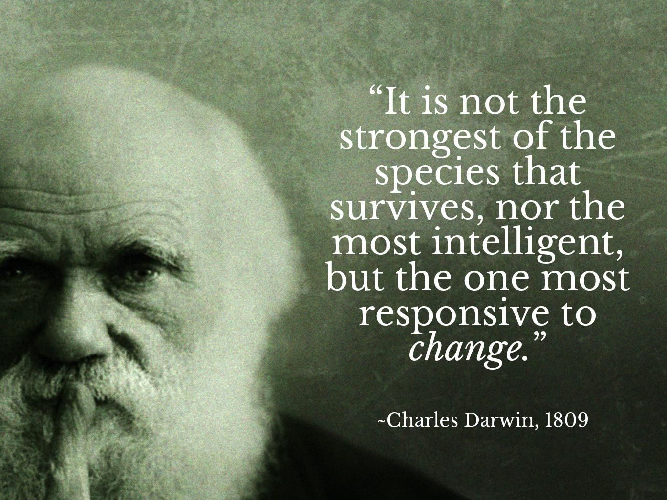 Happy Darwin Day Will We Heed His Time Tested Wisdom Citation