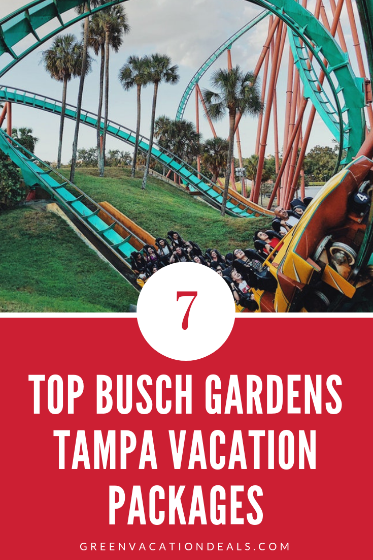 Busch Gardens Tampa Fl Hotel Packages