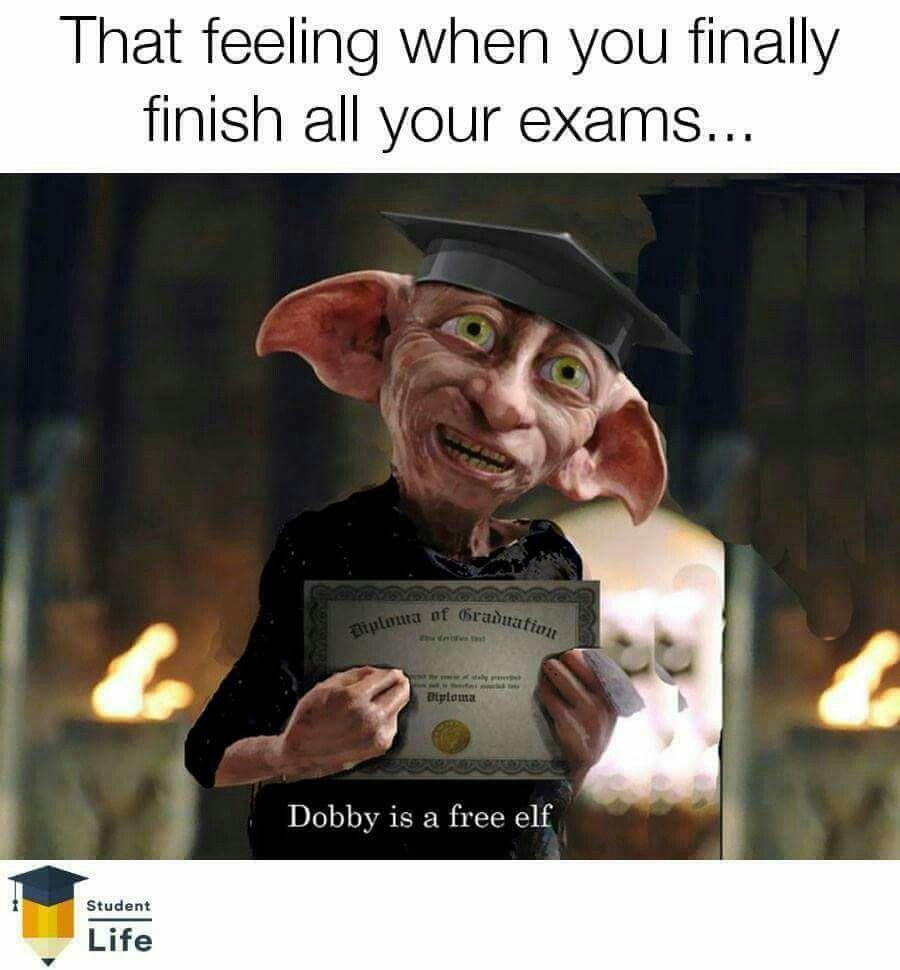 Best 21 Harry Potter Memes Dobby Chamber Of Secrets Harry Potter Memes Hilarious Dobby