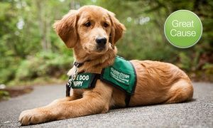 10 Donation To Guide Dogs For The Blind Guide Dog Service Dog