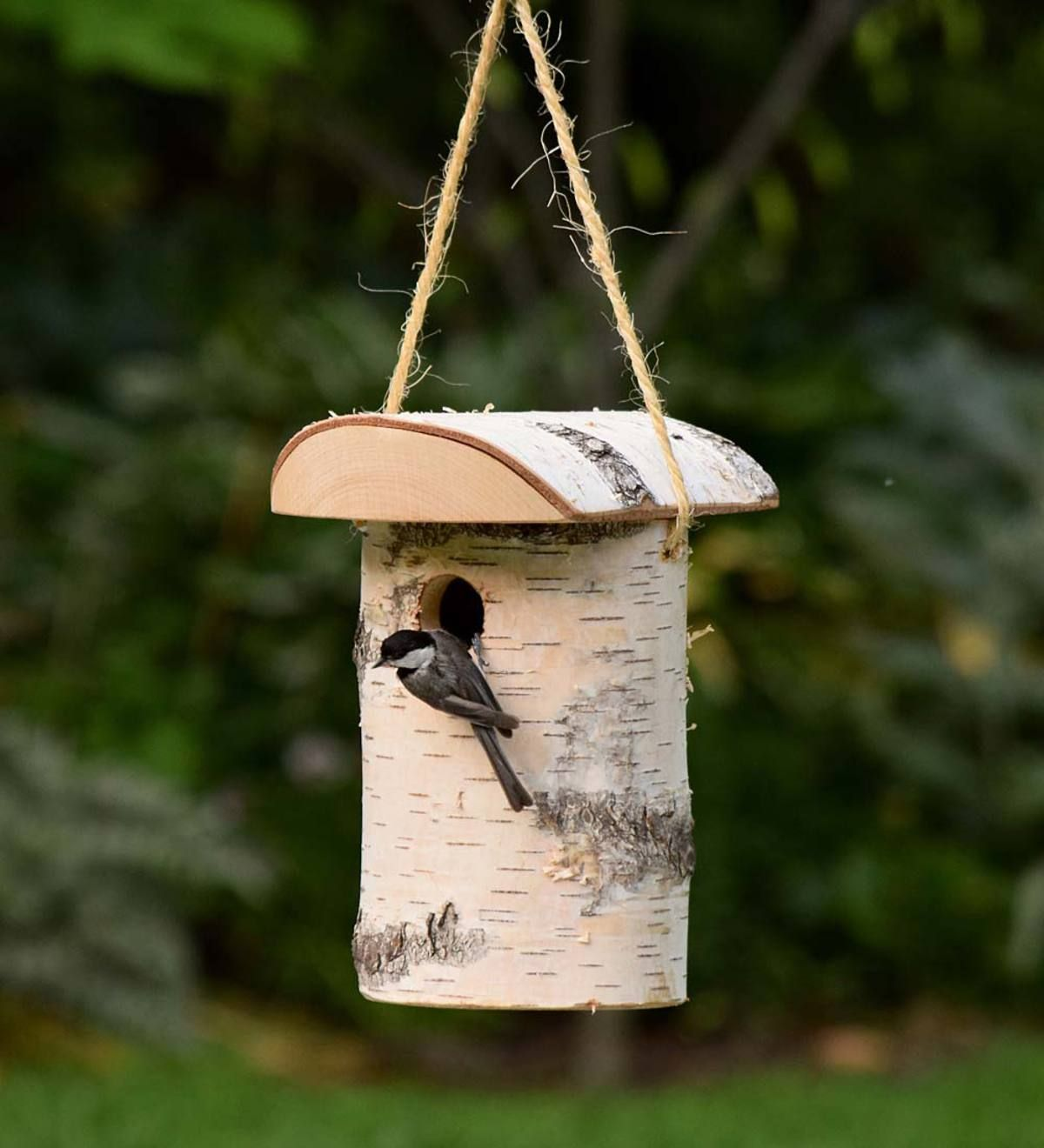 Our Handcrafted Birch Log Birdhouse is made from real