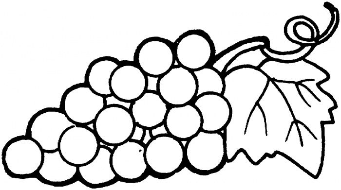 Grape 15 Coloring Page Supercoloringpages Com Fruit Coloring Pages