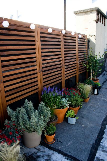 Pplar wall panel outdoor brown stained brown for Outdoor privacy wall panels