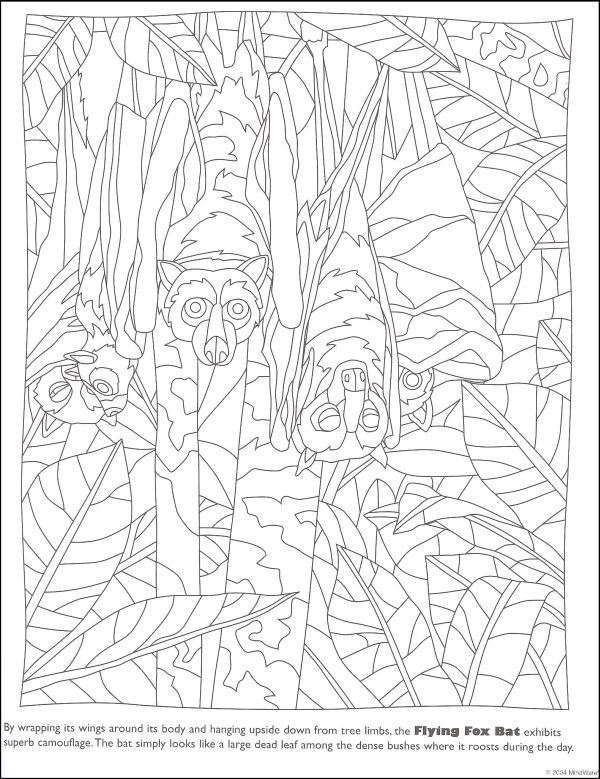 Mindware Coloring Pages Dover Coloring Pages Animal Coloring Pages