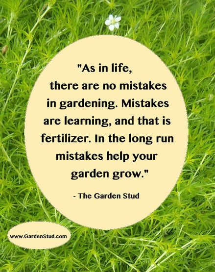 Flower Quotes, Garden Quotes, Garden Signs, Garden Club, Growing Roses,  Flower Gardening, Secret Gardens, Life Quotes, Planting