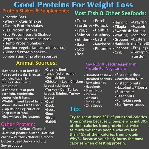 Weight loss shakes vegan