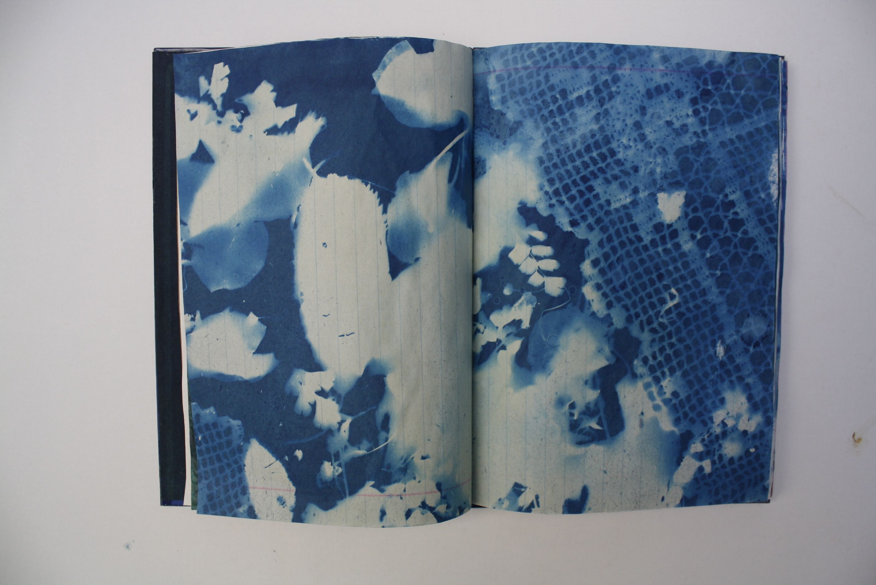 Artist's book with cyanotypes