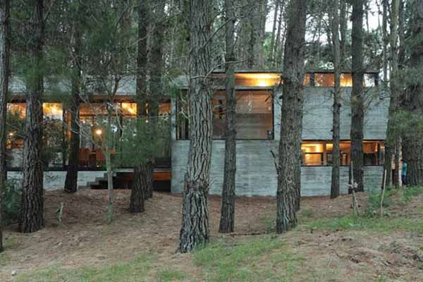 Incredible glass and concrete home in the forest | Concrete and Glass
