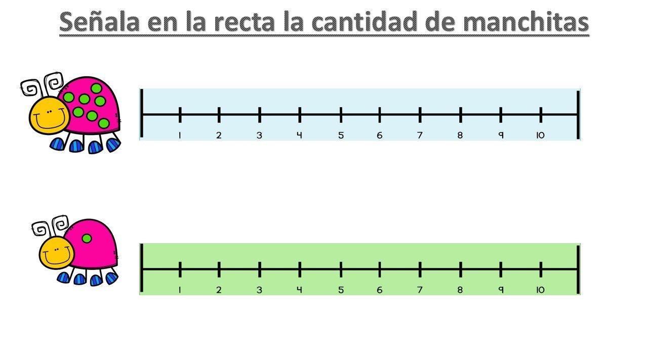 Os Hemos Preparado Estas Sencillas Actividades Con Las Que Trabajar Las Cantidades Y El Conteo En La Rect Recta Numerica Actividades De Matematicas Actividades