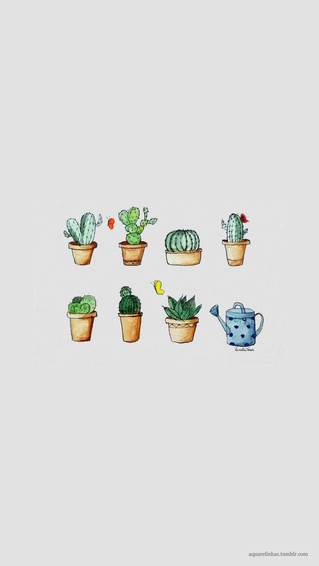 Cactus (versão para celular) A bit of everything