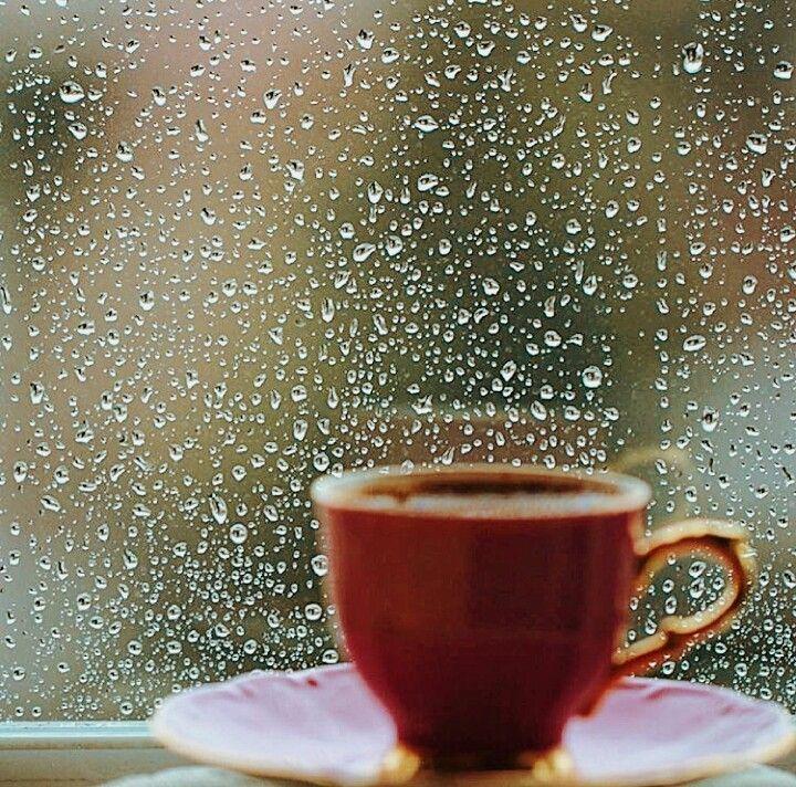 женской одеждой дождливое осеннее утро понедельника картинки так