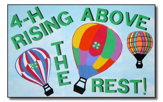 17 Best images about 4-H Poster Ideas on Pinterest | Tennessee ...