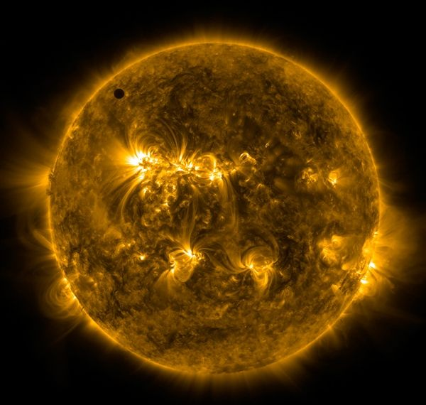 An extreme ultraviolet picture of the sun from NASA's Solar Dynamics Observatory shows the planet Venus in transit, as well as dramatic swirls of solar activity.