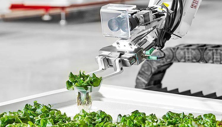 Bu Robotlar yüzde 90'lık su tasarrufu ile çiftlik