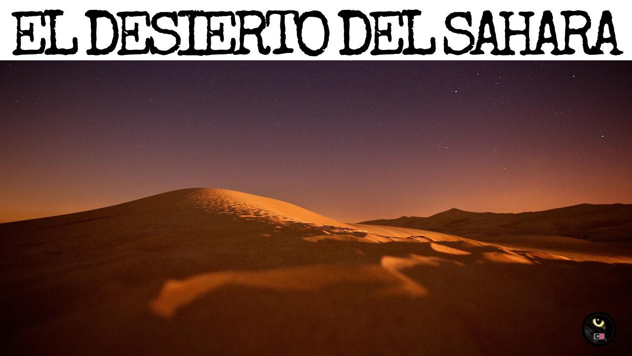 Desierto Del Sahara Características Flora Y Fauna Desierto Sahara Desierto Fauna