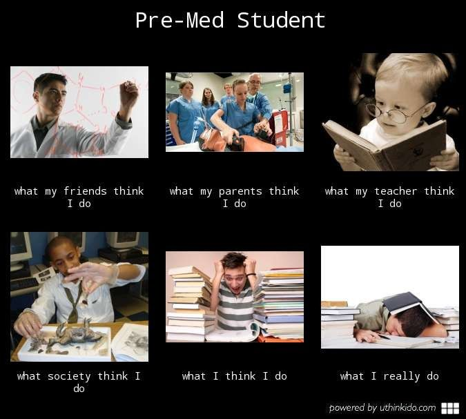 Dating a premed student