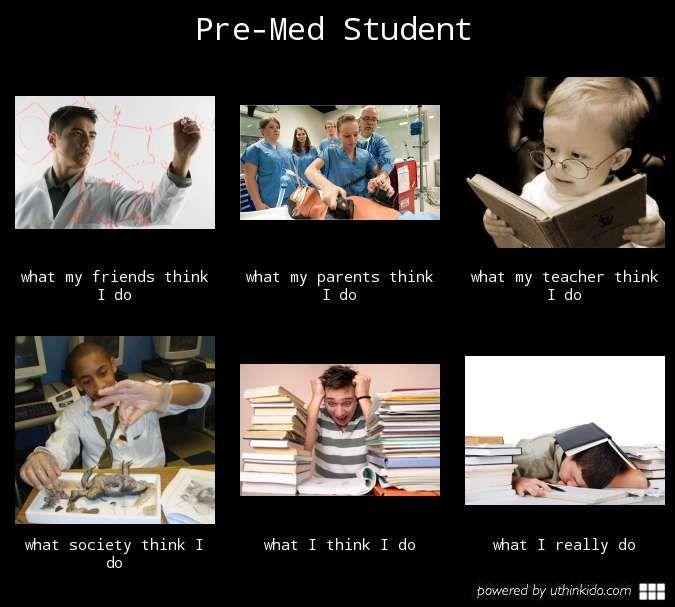 Pre Med Pre Med Memes With Images Pre Med Humor Pre Med