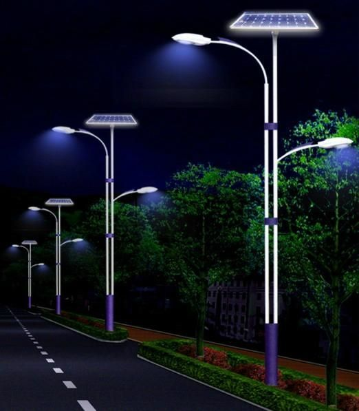 Captivating Solar Street Lights Product | Solar Street Light/Solar Outdoor Lighting  (CLSF 040W
