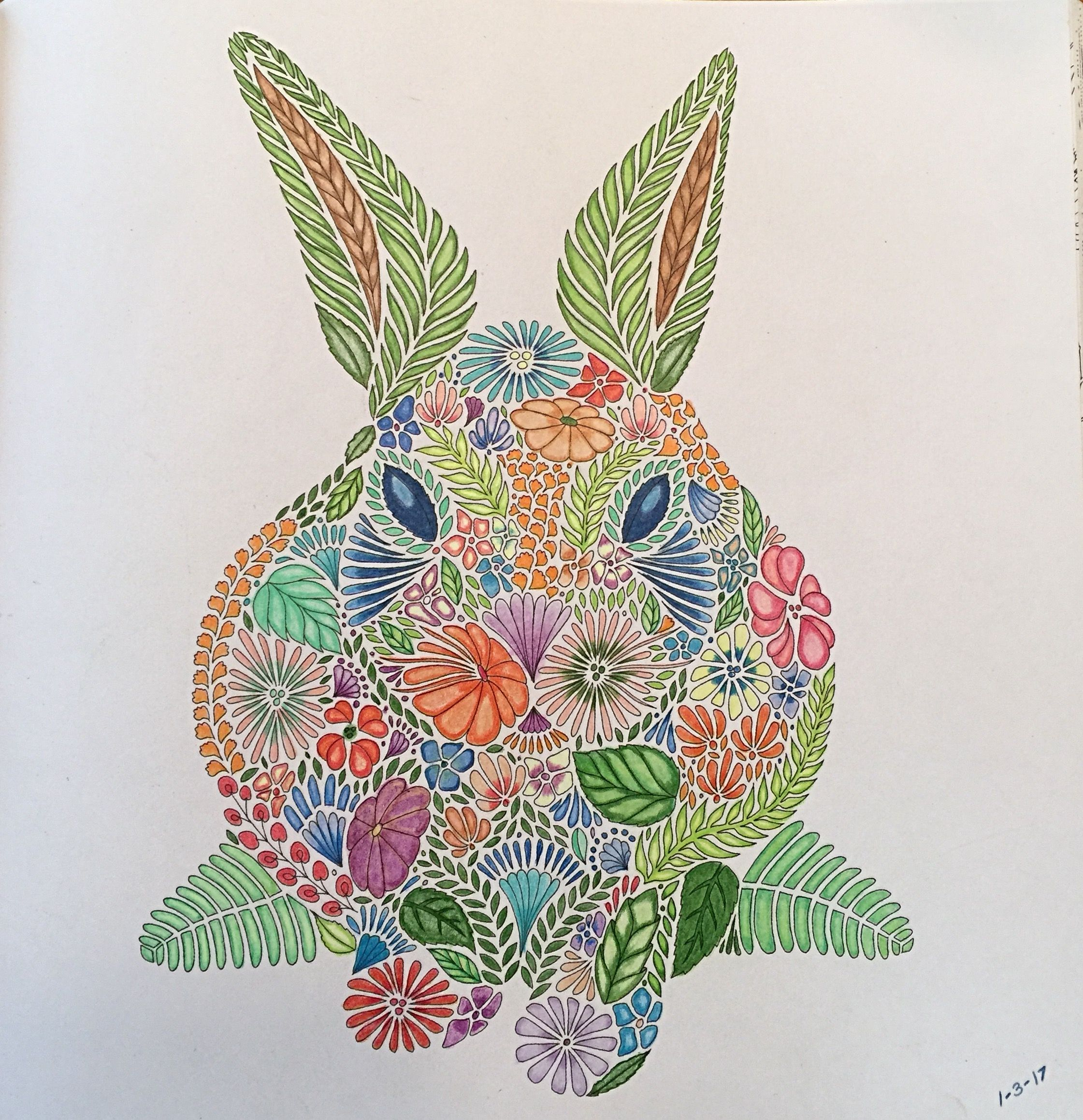 From Millie Marottas Animal Kingdom Rabbit Completed 1 3 2017