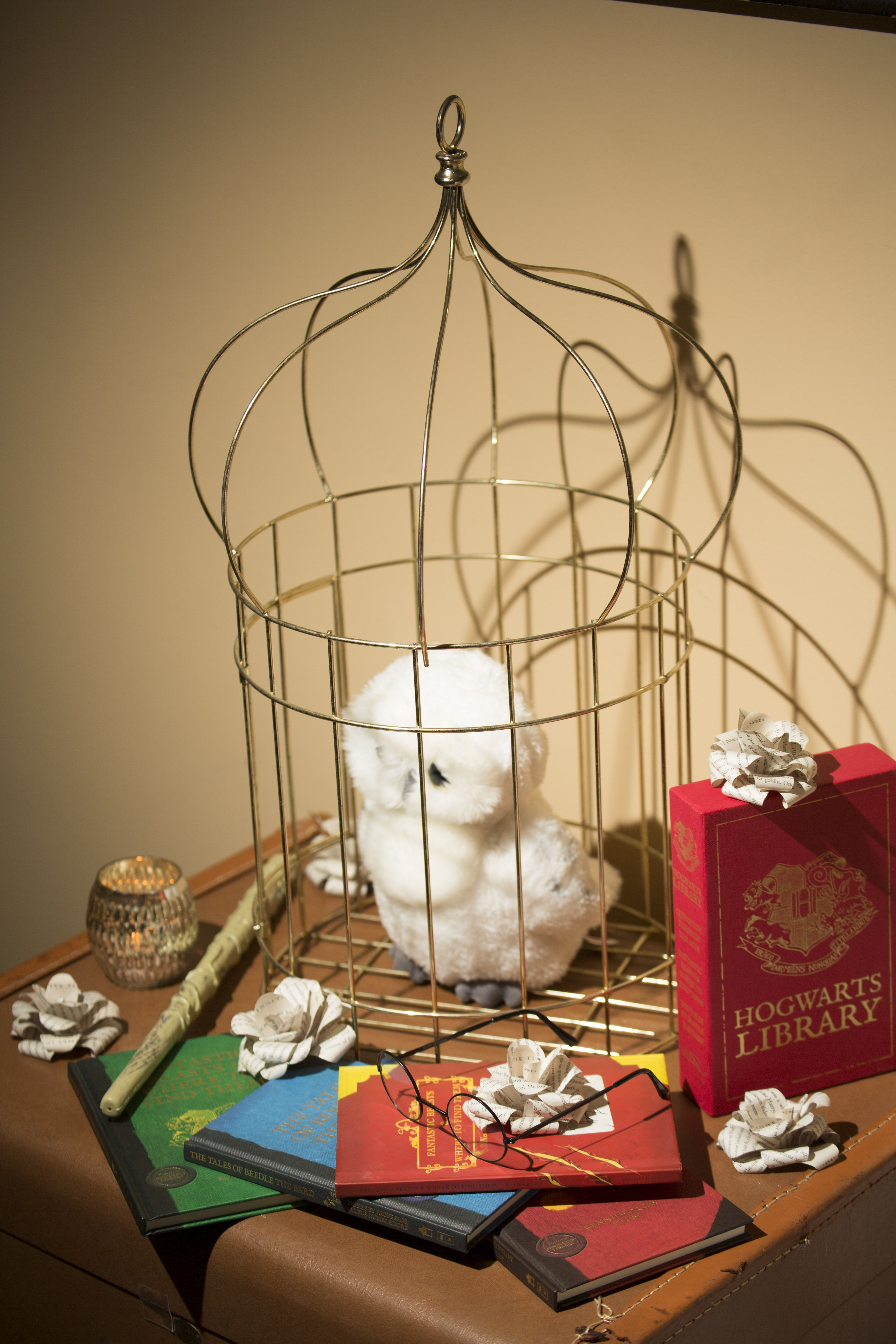 White owl on stacked trunks with Harry Potter books and HP