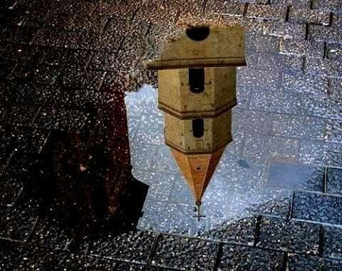 Venosa-  campanile cattedrale-  riflesso