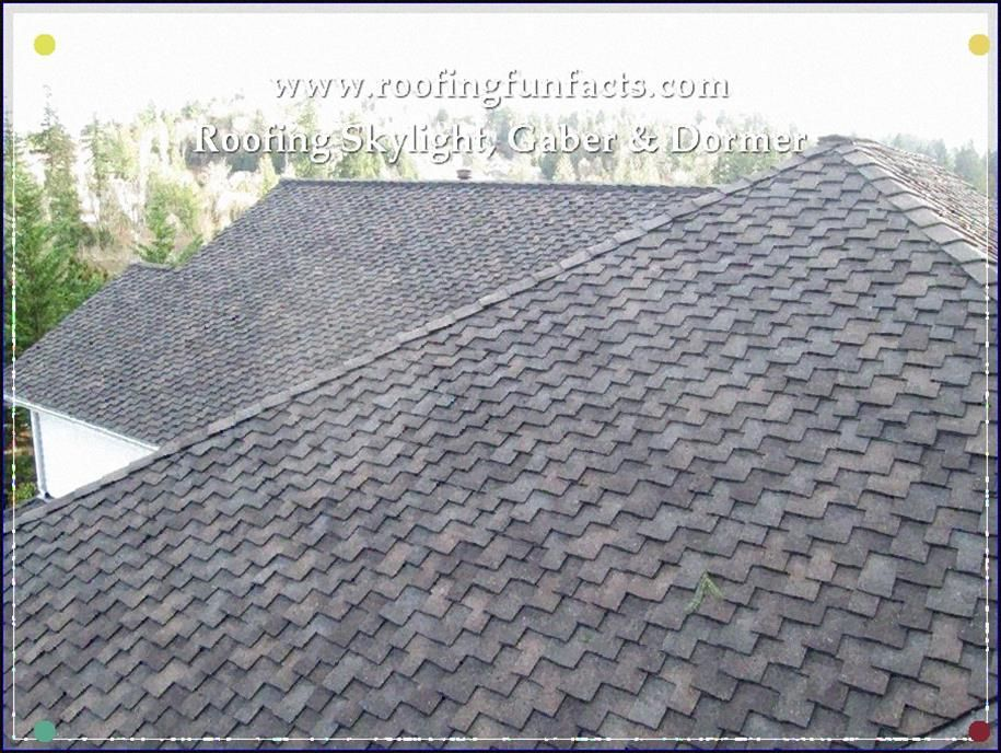 Fun Facts Of Roofing You Ought To Know To View Further For This Article Visit The Image Link Attractiverooftopgarden With Images Roofing Rooftop Garden Shingling