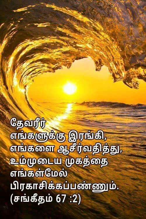 Pin On Tamil Bible Verse
