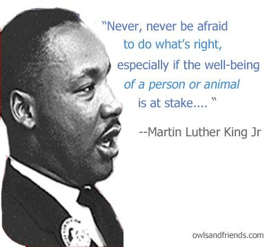 Martin Luther King Jr Continues To Inspire Just Sayin Animals