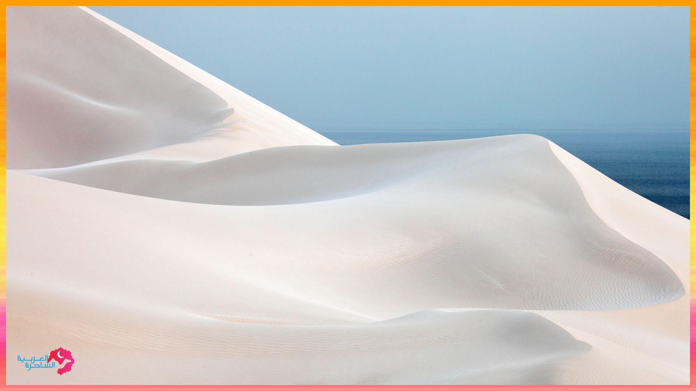 Socotra Island, Yemen جزيرة سوقطرة، اليمن www.magicalarabia.com