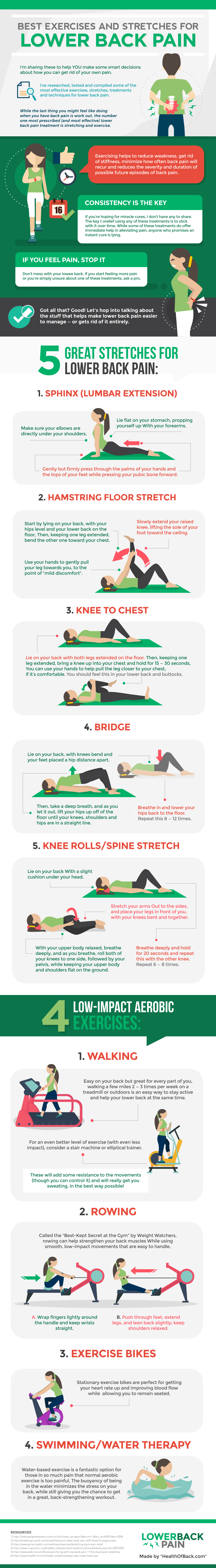 Best Exercises and Stretches for Lower Back Pain infographic