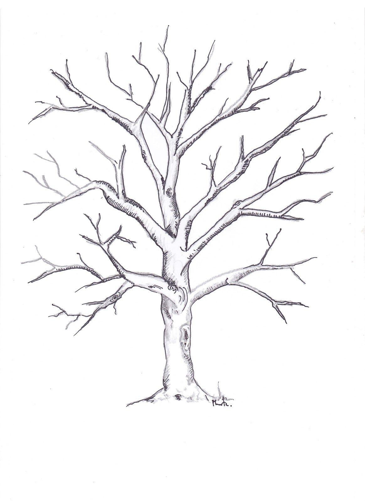 Dibujos De Arboles Secos