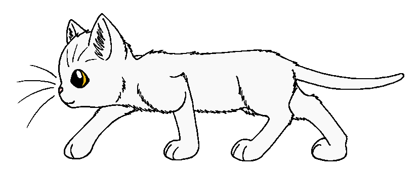 warrior cats coloring pages bluestar energy | ThunderClan - Whitestorm by WildpathOfShadowClan ...